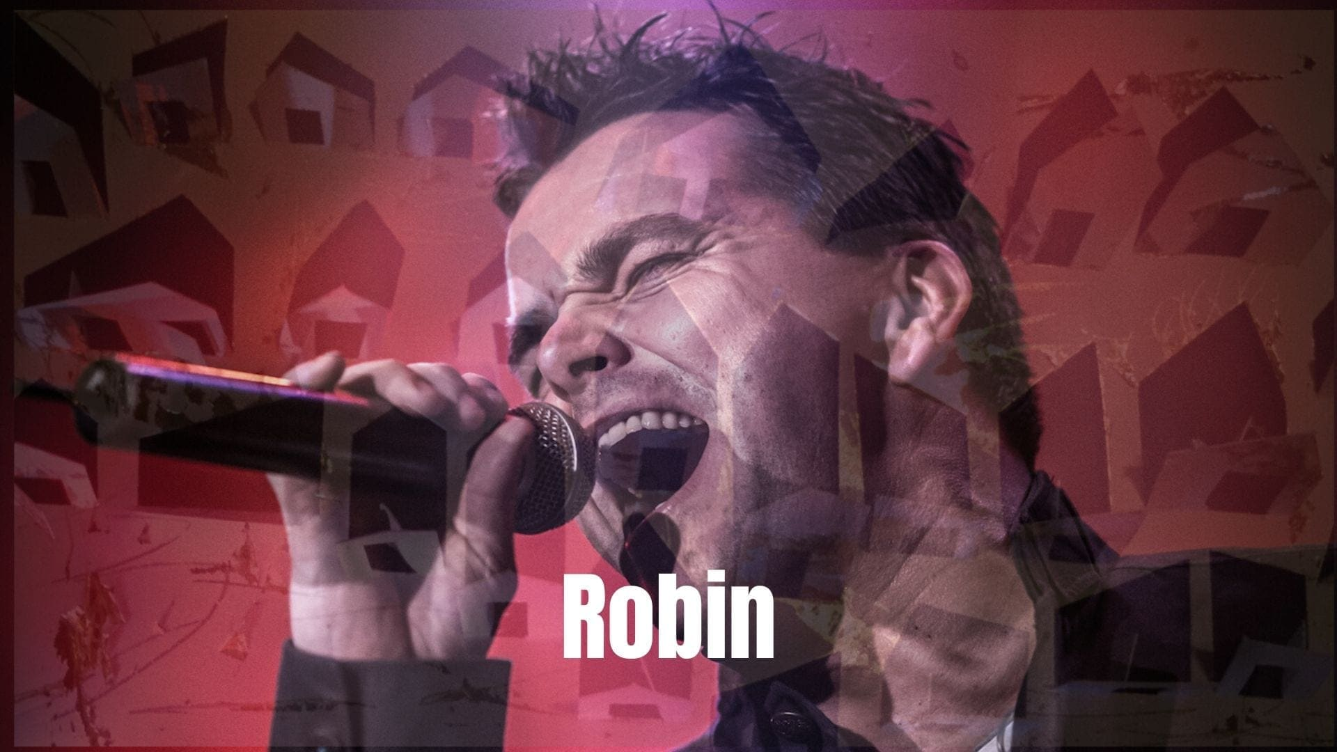 Robin (3)